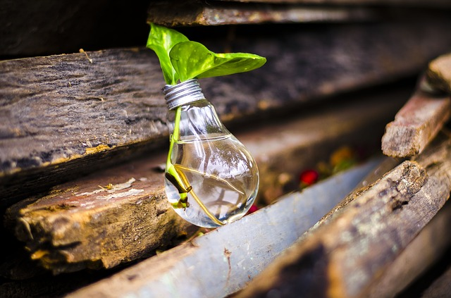 Small Businesses - Recycle
