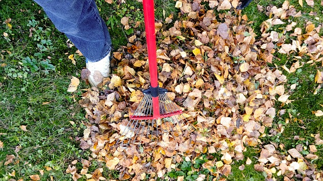 Stay Active - cleaning yard