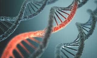 Genetic Kidney Disease