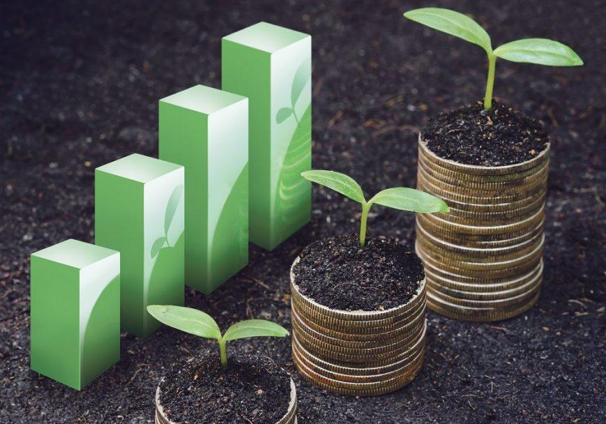 Agricultural economics Investment