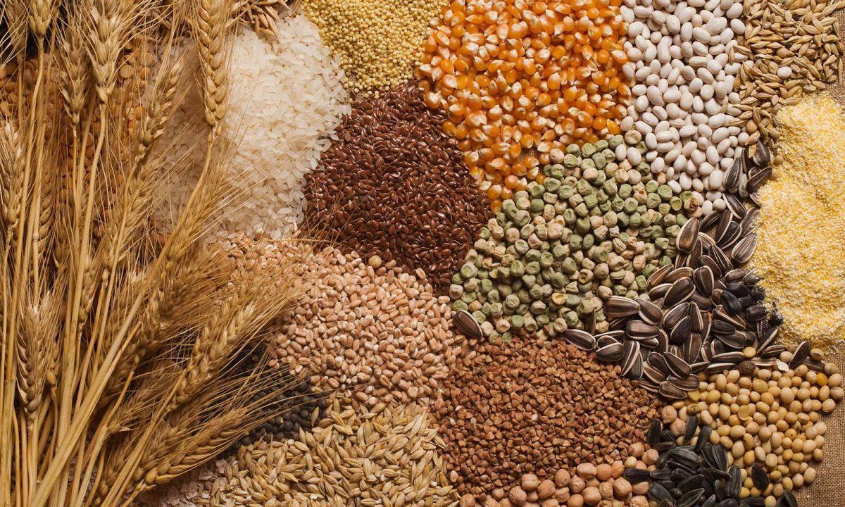 3. Grains