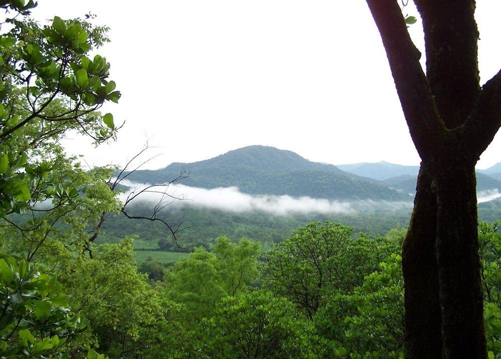 Gashaki-Gumpti-national-park_-Taraba-state_