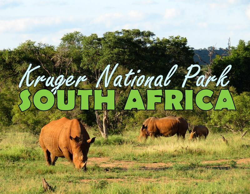 Places to Visit in Africa Kruger-National-Park-2