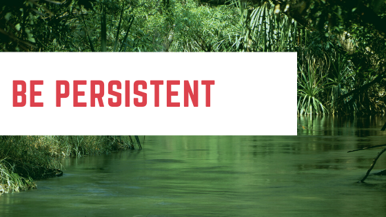Be persistent