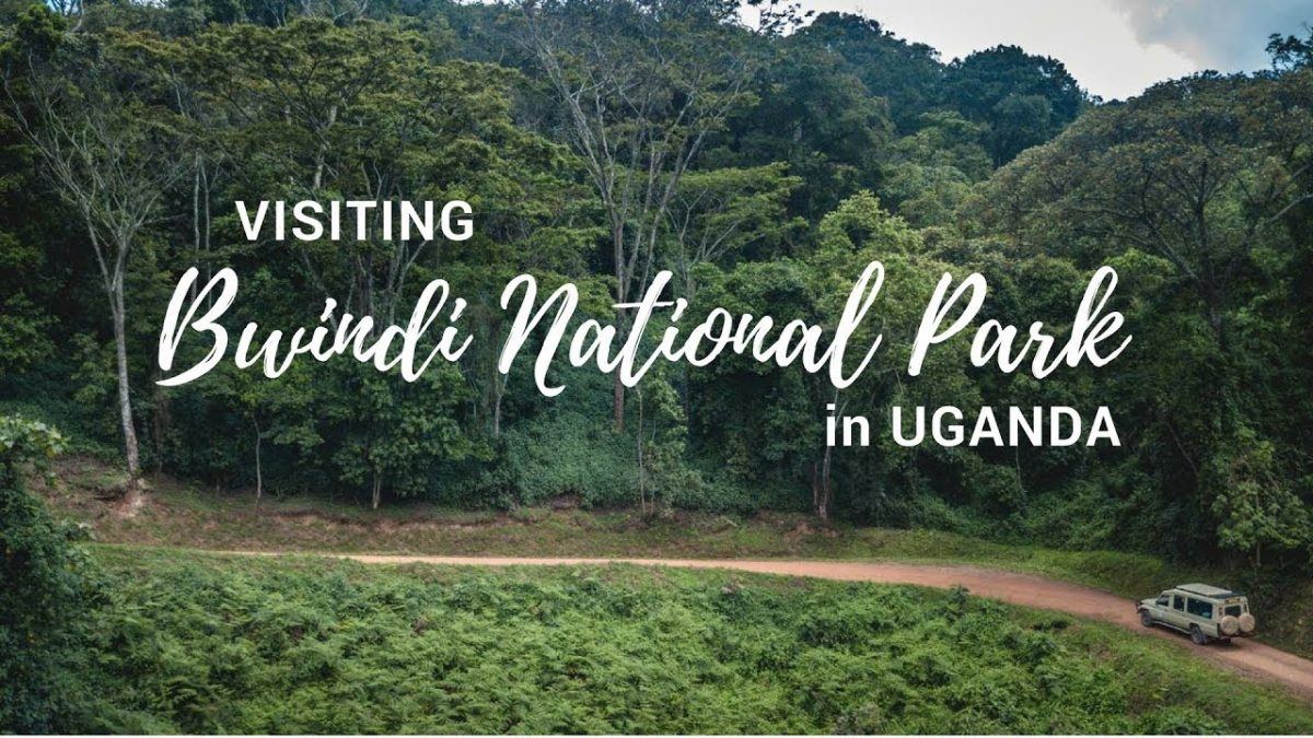 Places to Visit in Africa National Park Uganda