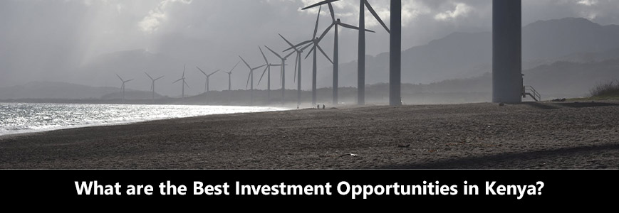 What are the best investment opportunities in Kenya?