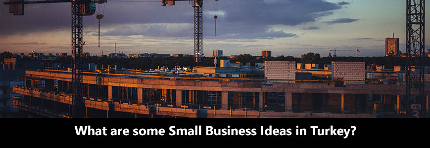 What are some small business ideas in Turkey?