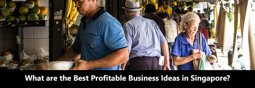 What are the best profitable business ideas in Singapore?