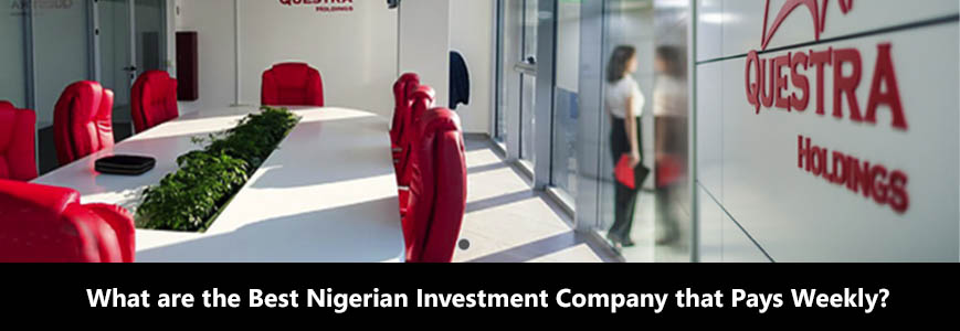 best Nigerian investment company woman in the office
