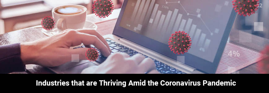 Economic Activities Thriving Amid the Coronavirus Pandemic
