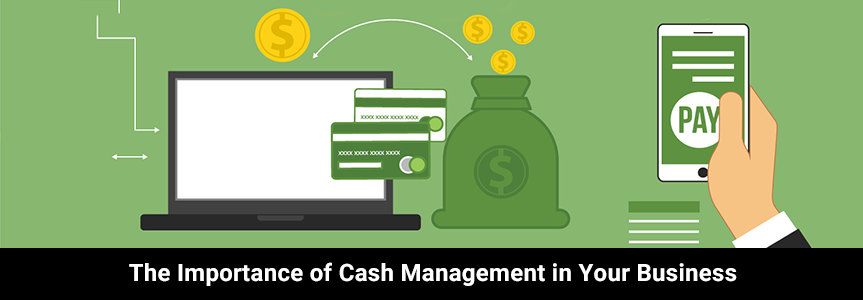 graphic dollar, cards, mobile and laptop icon showing cash management