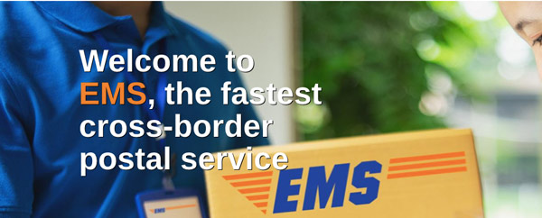 screenshot from ems site, where a woman is receiving a mailing from a courier.